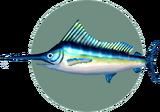 Blue Marlin (City Folk)