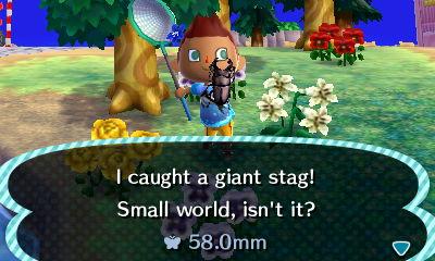 File:Giant stag beetle new leaf 2.jpg