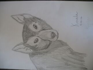 Realistic wolf