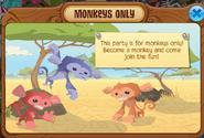 Monkeys only
