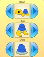 Pet turtle patterns 2