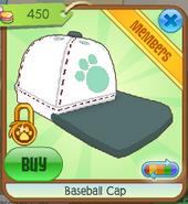 Baseball cap2