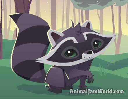 File:Raccoon Animal jam.png
