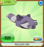 Raccoonhat03
