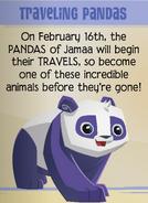 Jamaa-Journal Vol-191 Traveling-Pandas