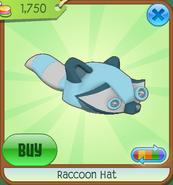 Raccoonhat05