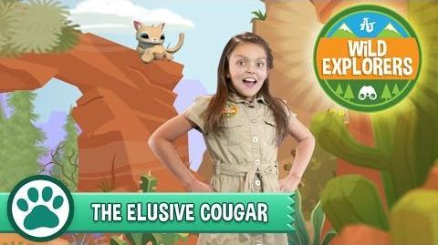 Wild Explorers - The Elusive Cougar