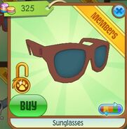 Sunglasses 6