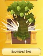 Boomseed
