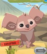 Animal jam travelling koala