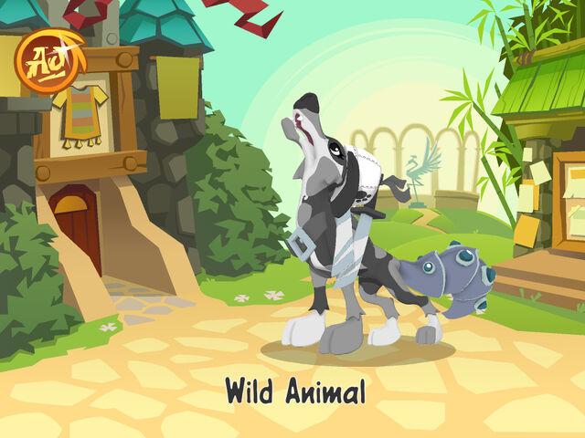 File:AnimalJam 1.jpg