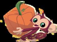 Monkey holding pumpkin