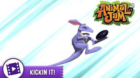 Animal Jam - Kickin' It