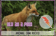 Foxjag