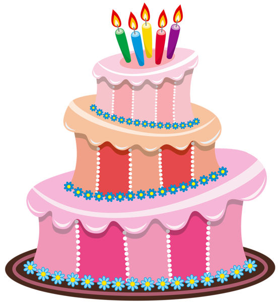 image pink birthday cake png animal jam wiki fandom powered by wikia. Black Bedroom Furniture Sets. Home Design Ideas