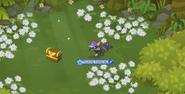 Phantom-Portal Treasure-Flowers