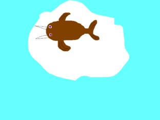 Animaljam Walrus