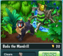 Badu the Mandrill