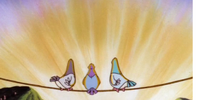 Episode 99: Birds on a Wire/The Scoring Session/The Animaniacs Suite