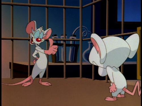 File:Palvov's Mice (8).jpg
