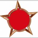 File:Badge-12-2.png