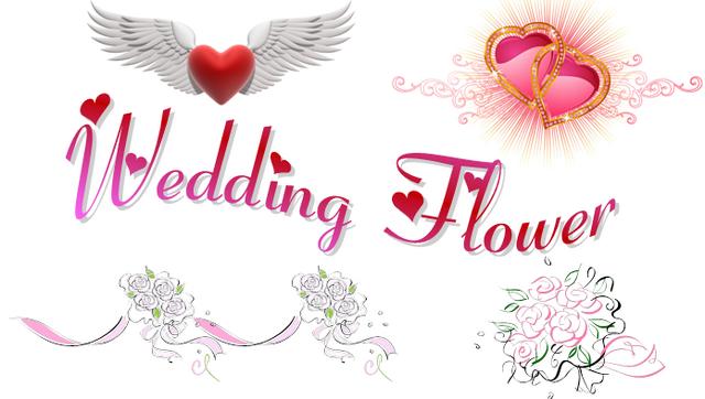 File:WD logo1.png