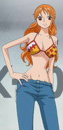 Anime Nami Post Timeskip Infobox