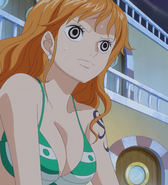 Nami Worried About the Undersea Volcano Stitched Cap (One Piece Ep 526)