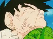 Piccolo punchs gohan