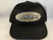 Animorphs baseball cap oval logo