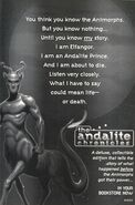 Andalite chronicles ad3 from inside book 13