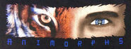 Human tiger eyes shirt graphic closeup
