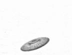 Andalite chronicles flipbook skrit na saucer