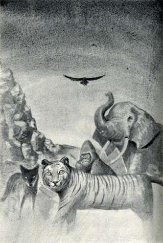 File:Animorphs morphed in battle morphs The Predator Japanese illustration.jpg
