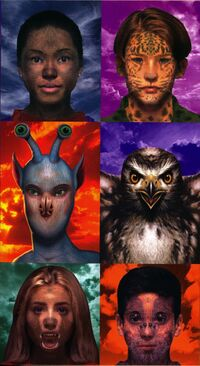 All 6 Animorphs faces only from mm2 inside cover