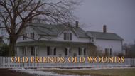 S3-OldFriendsOldWounds