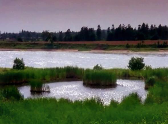 File:Lakeofshiningwaters.jpg