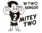 Mitey2-mt