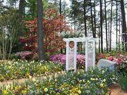 WRAL Garden