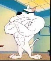 ArnoldthePitBull