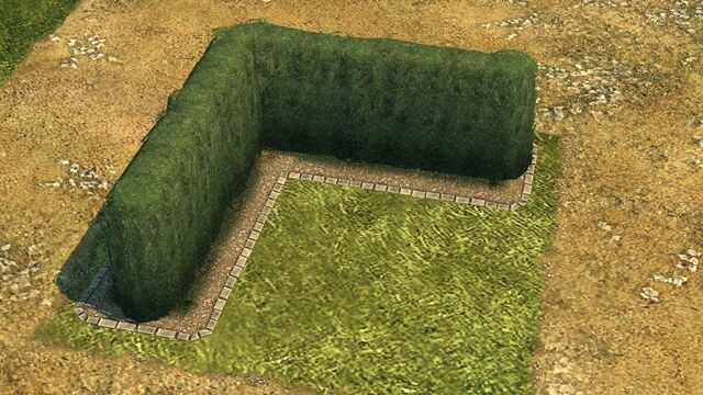 File:Hedge.jpg