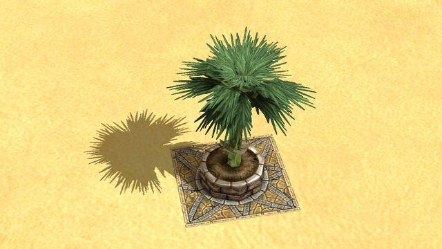 File:Palm.jpg