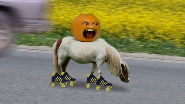 File:AO Pony.jpg
