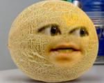 AO Cantaloupe