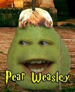 Pear Weasley