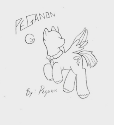 IMG Peganon