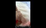 Screen Shot 2016-07-22 at 6.42.24 PM