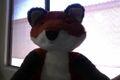 Orange Fox.jptec