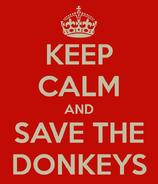 Keep Calm Donkey