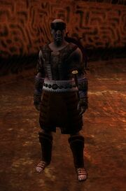 Cult Warrior